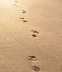 Path on a beach